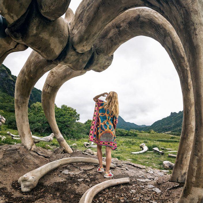 Kong Island Hawaii